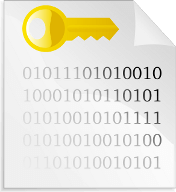 file of binary code with key, encryption