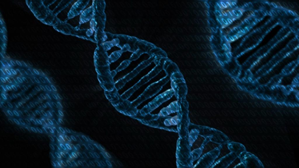 DNA data storage binary